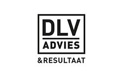 DLV Intensief Advies BV