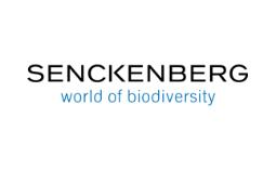Institut Senckenberg