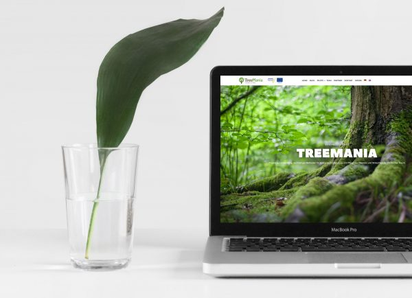 Website for TreeMania project launched
