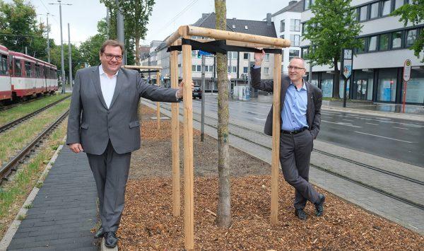 Nieuwe bomen voor Krefeld
